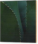 Blades Of Agave Wood Print