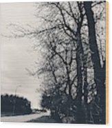 Bleak, Barren Trees Lining A Vacant Street Wood Print