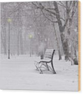 Blizzard In The Park Wood Print