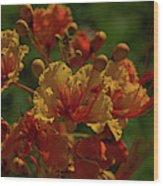 Blooming Away Wood Print