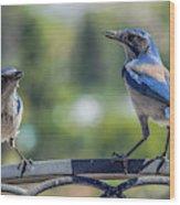 Blu And Blu2 Wood Print