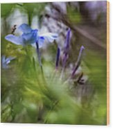 Blue And Green 2 Wood Print