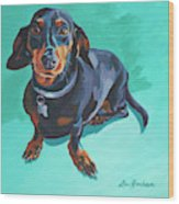 Blue Dachshund  Wood Print