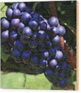 Blue Grape Bunches 5 Wood Print