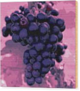 Blue Grape Bunches 6 Wood Print