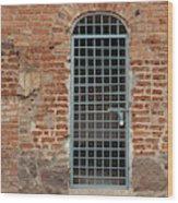 Blue Grid Doorway Wood Print