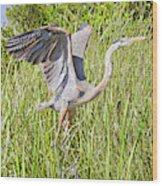 Blue Heron On The Rise Wood Print