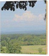 Blue Ridge Mountains And Vineyards Wood Print