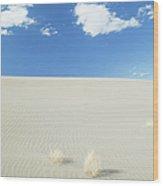 Blue Sky Over Sand Dune Wood Print