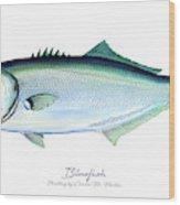 Bluefish Wood Print