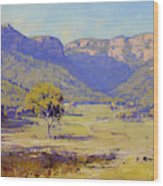Bluffs Of The Capertee Valley Wood Print