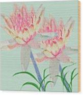 Blush Of Pink Wood Print