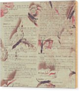 Book Bugs Wood Print