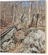 Boulders Along The Trail Wood Print