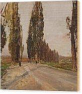 Boulevard Of Poplars Near Plankenberg Wood Print