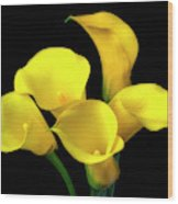 Bouquet Of Yellow Calla Lilies Wood Print
