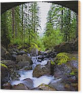 Bridge Below Rainier Wood Print