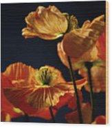 Bright Orange Poppies Wood Print