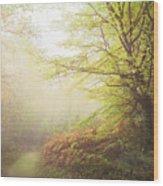 Broceliand Path Wood Print