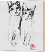 Brothers Cats Wood Print