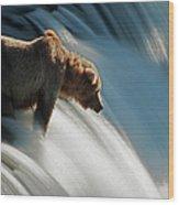 Brown Bear At Brooks Falls Wood Print