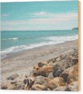 Bruce Bay New Zealand Painterly Wood Print