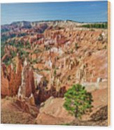 Bryce Canyon Sunrise Point Wood Print