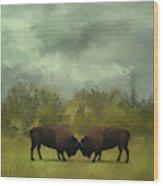 Buffalo Standoff - Painting Wood Print