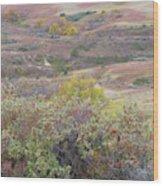 Buffaloberry Prairie Wood Print