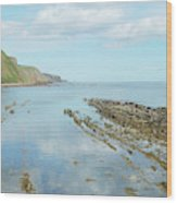 Burnmouth Shore, Cliffs And North Sea Wood Print