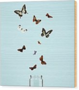 Butterflies Escaping From Jar Wood Print