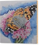 Butterfly At Lunch Wood Print