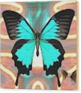 Butterfly Patterns 21 Wood Print