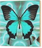 Butterfly Patterns 22 Wood Print