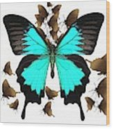 Butterfly Patterns 25 Wood Print