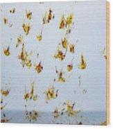 Butterfly Splash Wood Print