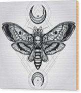 Butterfly - Vector Wood Print