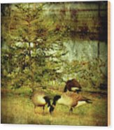 By The Little Tree - Lake Carasaljo Wood Print