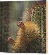 Cactus With Beetle Wood Print