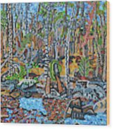 Cade's Land Trail Along The Eno Wood Print