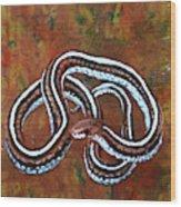 California Garter Snake Wood Print