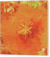 California Poppy Inside Wood Print