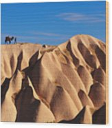 Camel And The Cameleer On The Rock Wood Print