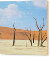 Camel Thorn Trees In Sossusvlei, Namibia Wood Print