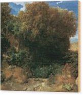 Campagna Landscape 1858 Wood Print