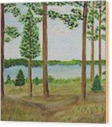 Camping At The Lake Wood Print
