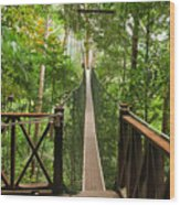 Canopy Walkway. Taman Negara National Wood Print
