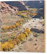 Canyon De Chelley Autumn Wood Print