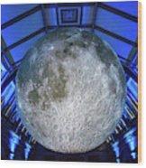 Capture The Moon Wood Print