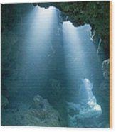 Caribbean Sea, Cayman Islands, Grand Wood Print